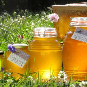 jars of fresh honey in a field of flowers