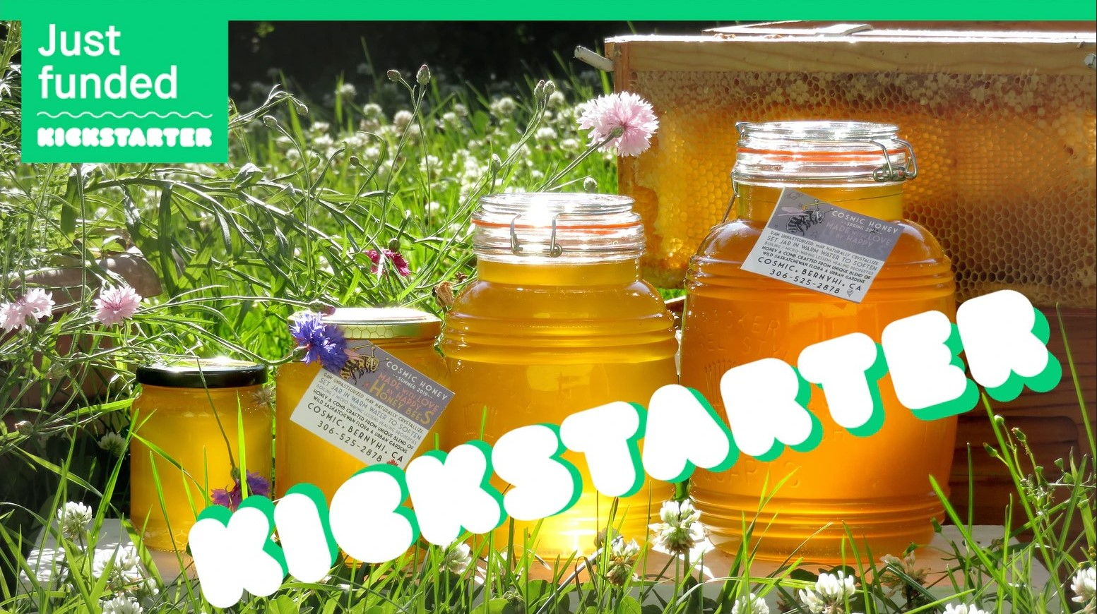 jars of honey with kickstarter logo on top